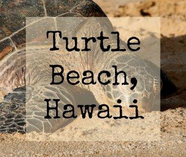 Turtle Beach otsikko